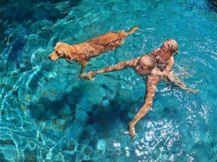 O cloro da água da piscina faz mal aos cães: cão numa piscina com duas crianças