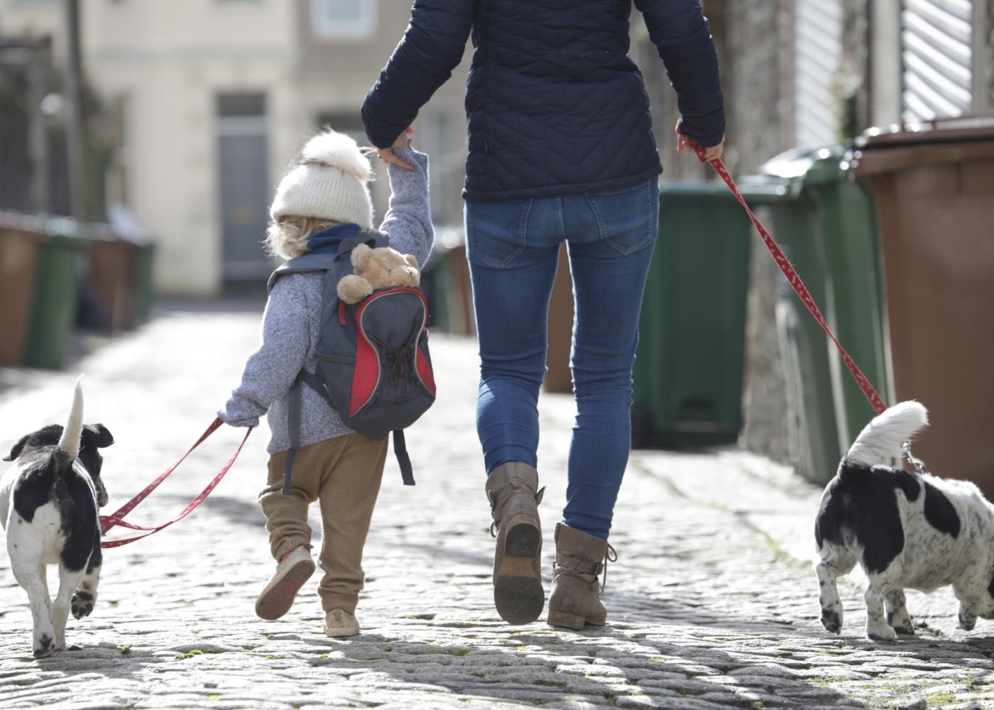 Mãe e filho a passear os cães