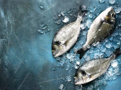 covid-19 pode permanecer em alimentos congelados