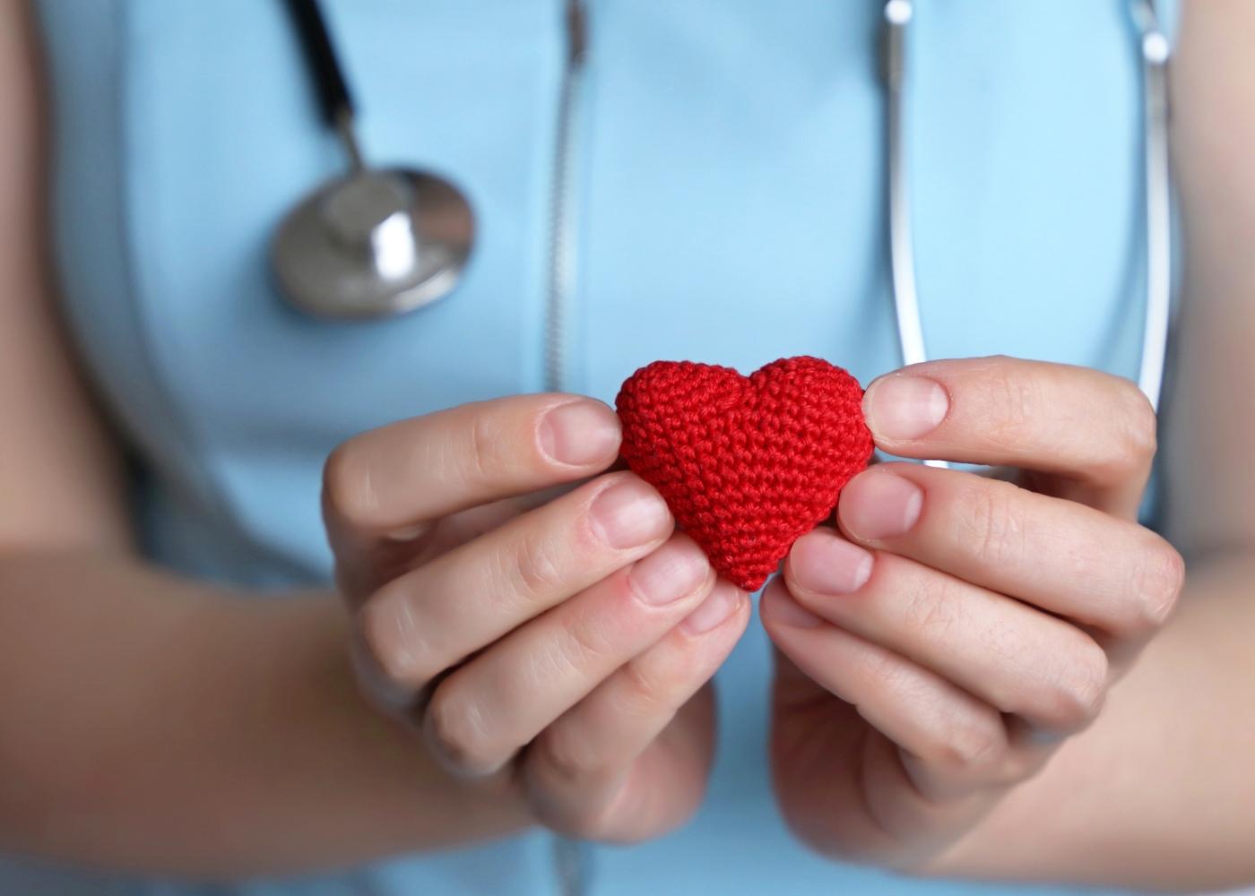 Profissional de saúde com maquete de coração nas mãos