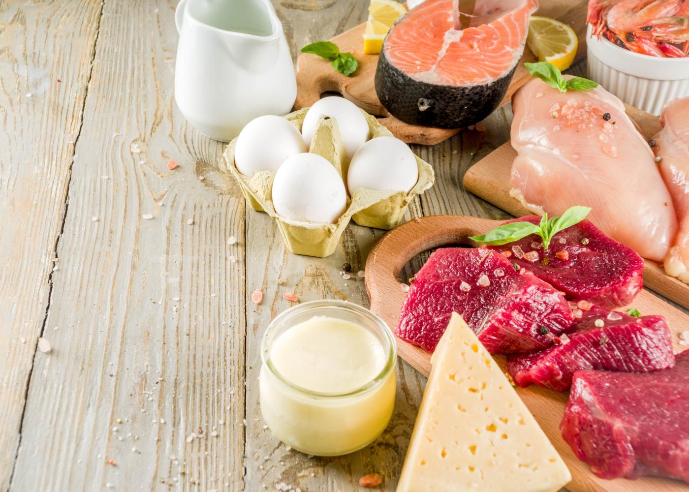 produtos lácteos, carne, peixe e ovos