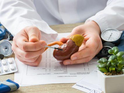 Médica a explicar a estrutura dos rins