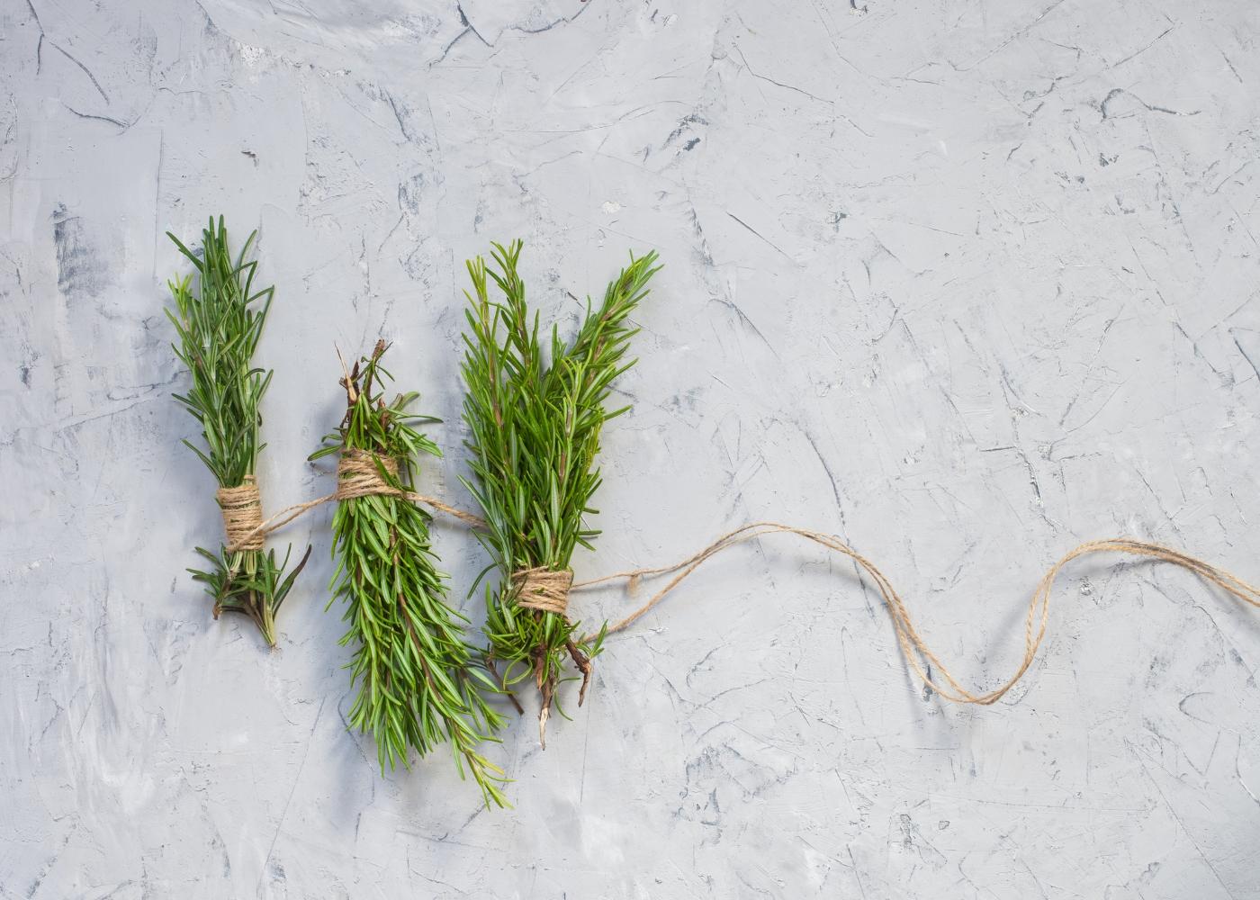 ervas aromáticas arranjadas