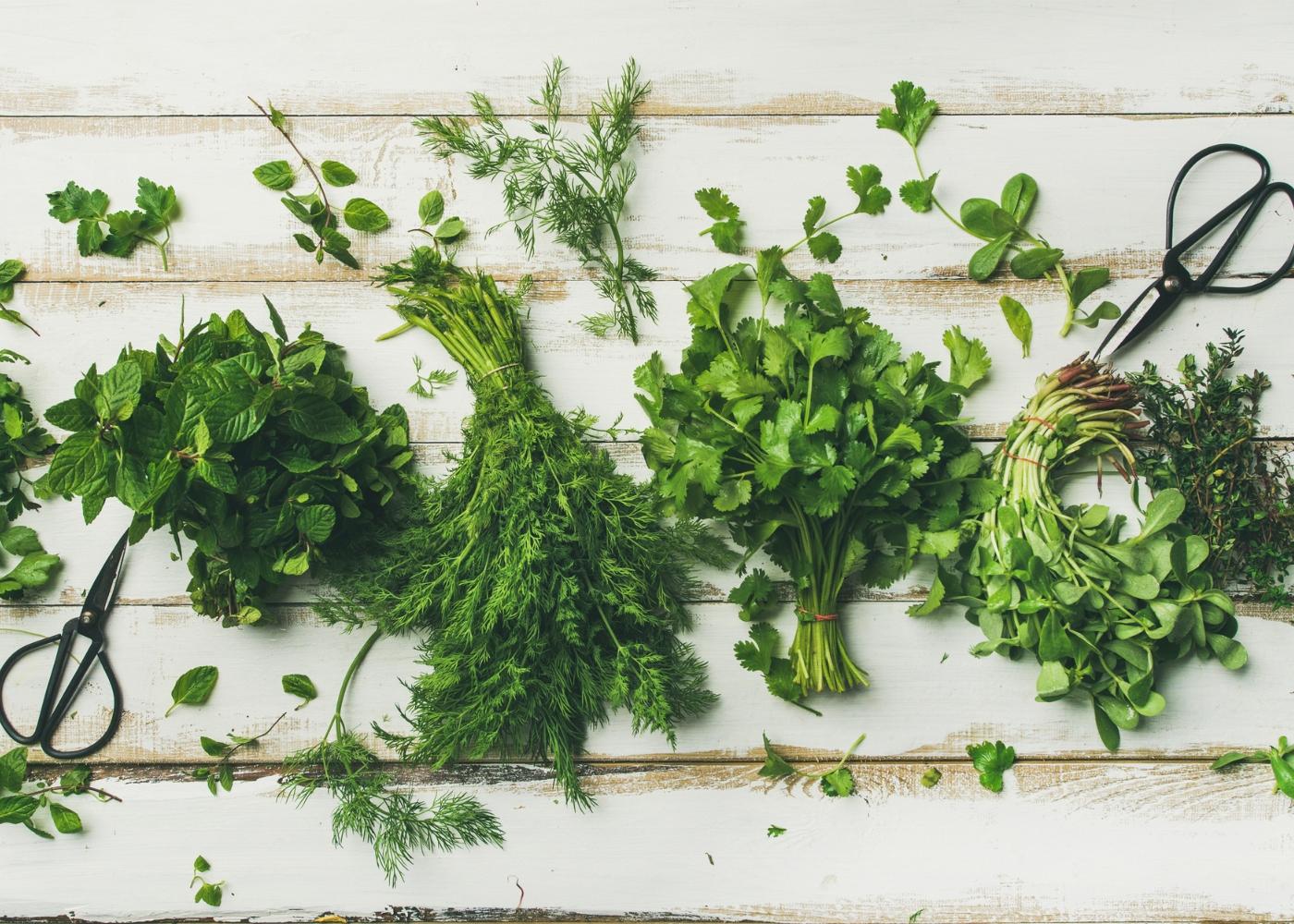 ervas aromáticas cortadas