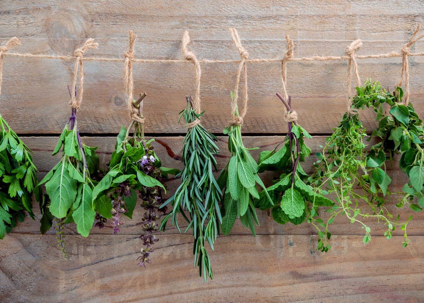 diferentes tipos de ervas aromáticas penduradas numa corda