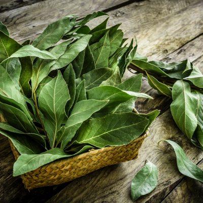 Folhas de louro num cesto