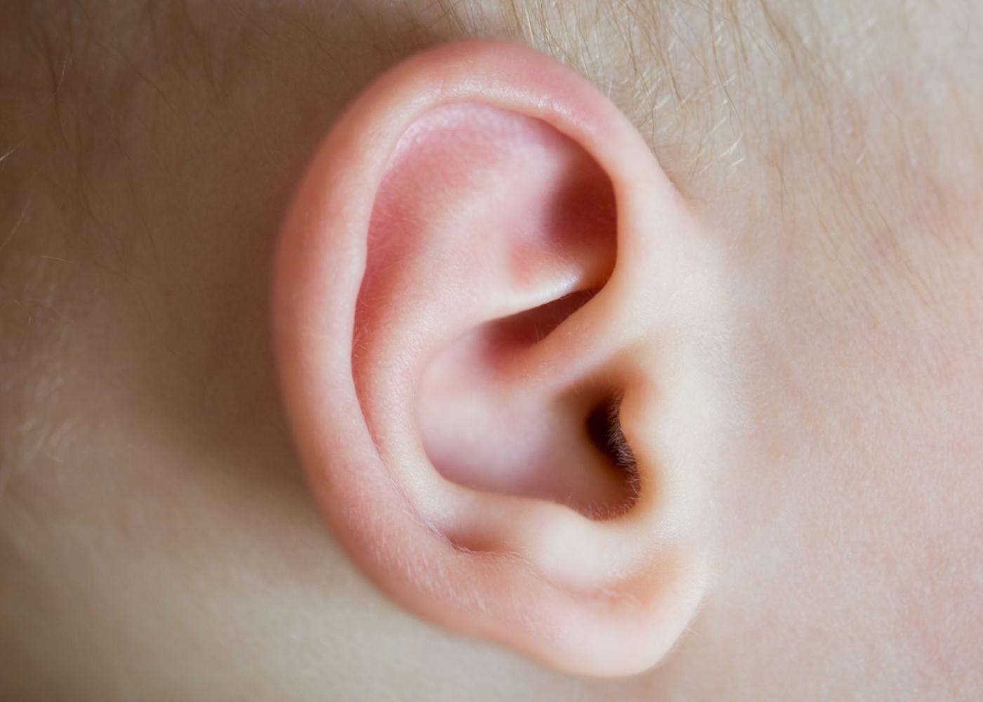 Grande plano de ouvido de bebé