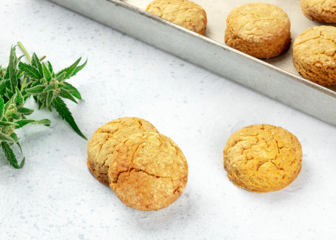 receitas de biscoitos de azeite com farinhas alternativas