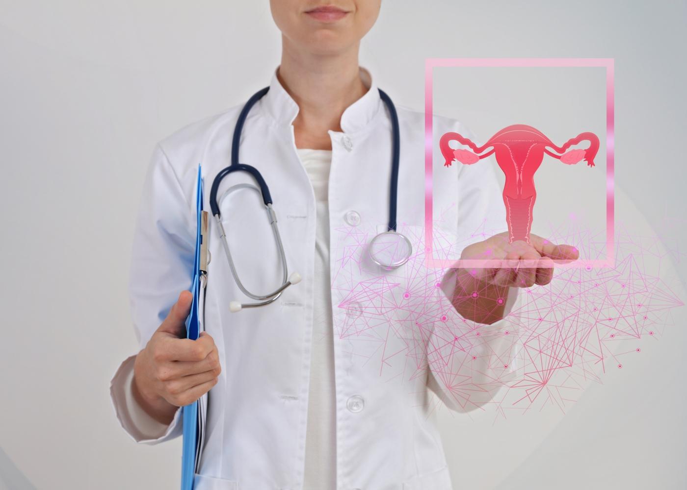 Ilustração do sistema reprodutor feminino